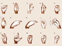 Partial display of sign language alphabet showing hand positions